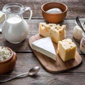 FIC: macchinari per l'industria lattiero casearia